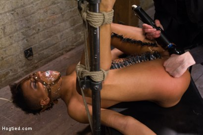 Photo number 12 from Live! Feisty whore- bound, tormented and fucked! shot for Hogtied on Kink.com. Featuring Nikki Darling in hardcore BDSM & Fetish porn.