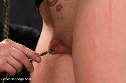 Photo number 14 from Tough Love - Josi Valentine shot for Device Bondage on Kink.com. Featuring Josi Valentine in hardcore BDSM & Fetish porn.