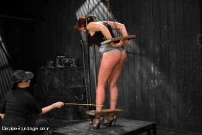 Photo number 13 from Tough Love - Josi Valentine shot for Device Bondage on Kink.com. Featuring Josi Valentine in hardcore BDSM & Fetish porn.
