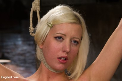 Photo number 9 from Blonde with Big Natural Breasts - RODE HARD! shot for Hogtied on Kink.com. Featuring Cherry Torn in hardcore BDSM & Fetish porn.