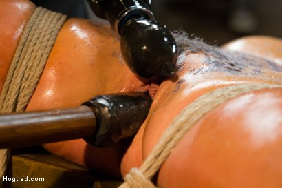 Photo number 8 from Horny Slut Can't Stop Fucking Herself shot for Hogtied on Kink.com. Featuring Cameron Dee in hardcore BDSM & Fetish porn.
