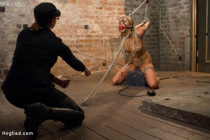 Photo number 13 from Horny Slut Can't Stop Fucking Herself shot for Hogtied on Kink.com. Featuring Cameron Dee in hardcore BDSM & Fetish porn.