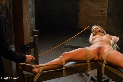 Photo number 6 from Horny Slut Can't Stop Fucking Herself shot for Hogtied on Kink.com. Featuring Cameron Dee in hardcore BDSM & Fetish porn.