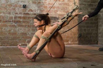 Photo number 9 from Bringing Home The Gold shot for Hogtied on Kink.com. Featuring Mia Gold in hardcore BDSM & Fetish porn.