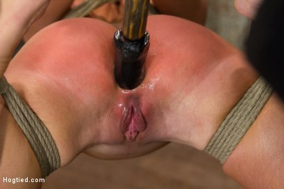 Photo number 11 from Bringing Home The Gold shot for Hogtied on Kink.com. Featuring Mia Gold in hardcore BDSM & Fetish porn.