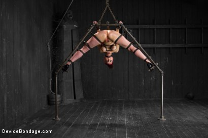 Photo number 15 from Nerine takes it all! Intense immobilizing positions  shot for Device Bondage on Kink.com. Featuring Nerine Mechanique in hardcore BDSM & Fetish porn.