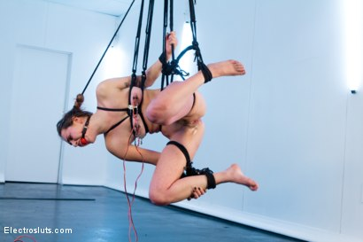 Photo number 7 from Bobbi Starr Strap-on Electrofucks Missy Minx in Suspension Bondage! shot for Electro Sluts on Kink.com. Featuring Bobbi Starr and Missy Minks in hardcore BDSM & Fetish porn.
