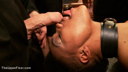Photo number 2 from Porn Star Anal Orgy shot for The Upper Floor on Kink.com. Featuring Nikki Darling, Juliette March, Natalie Moore, Derrick Pierce and Mark Davis in hardcore BDSM & Fetish porn.