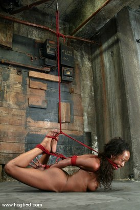 Photo number 6 from Stacey Cash shot for Hogtied on Kink.com. Featuring Stacey Cash in hardcore BDSM & Fetish porn.