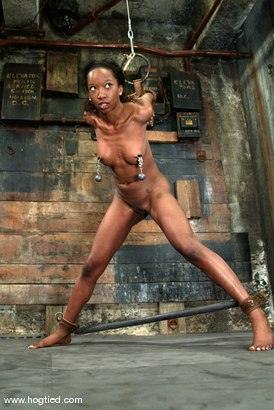 Photo number 10 from Stacey Cash shot for Hogtied on Kink.com. Featuring Stacey Cash in hardcore BDSM & Fetish porn.