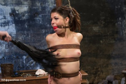 Photo number 4 from Elle Alexandra, gorgeous redhead dominatrix punishes Mia Gold! shot for Whipped Ass on Kink.com. Featuring Elle Alexandra and Mia Gold in hardcore BDSM & Fetish porn.
