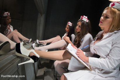 Photo number 2 from 5150 Feet: The most EXTREME lesbian anal footing ever! shot for Foot Worship on Kink.com. Featuring Allie Haze, Krissy Lynn, Amy Brooke and Brandy Aniston in hardcore BDSM & Fetish porn.