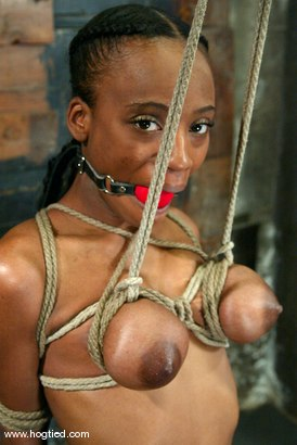 Photo number 4 from Yellow Kitty shot for Hogtied on Kink.com. Featuring Yellow Kitty in hardcore BDSM & Fetish porn.