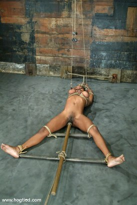Photo number 9 from Yellow Kitty shot for Hogtied on Kink.com. Featuring Yellow Kitty in hardcore BDSM & Fetish porn.