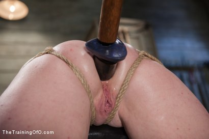 Photo number 10 from The Training of a Party Girl, Day One shot for The Training Of O on Kink.com. Featuring Audrey Hollander in hardcore BDSM & Fetish porn.