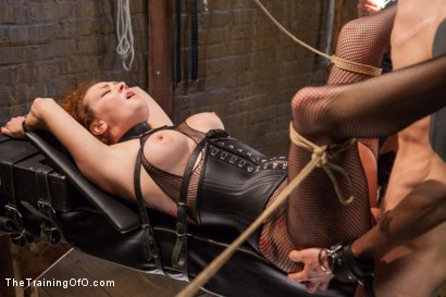 Photo number 8 from Party Girl Gets Her Pussy Destroyed on Her Final Day shot for The Training Of O on Kink.com. Featuring Audrey Hollander and Owen Gray in hardcore BDSM & Fetish porn.