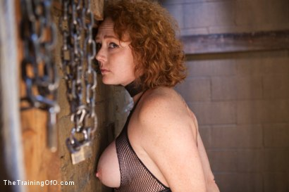 Photo number 6 from Party Girl Gets Her Pussy Destroyed on Her Final Day shot for The Training Of O on Kink.com. Featuring Audrey Hollander and Owen Gray in hardcore BDSM & Fetish porn.