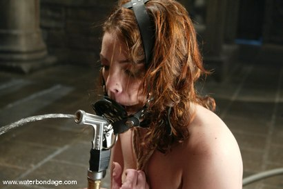 Photo number 9 from Tyler, Lochai and Jenya shot for Water Bondage on Kink.com. Featuring Tyler, Lochai and Jenya in hardcore BDSM & Fetish porn.