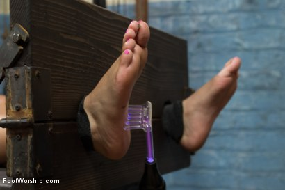 Photo number 4 from 18 Year Old Foot Tortured, Foot Tickle, Foot Job Slut! shot for Foot Worship on Kink.com. Featuring Maitresse Madeline Marlowe , Aria Arial  and Xander Corvus in hardcore BDSM & Fetish porn.