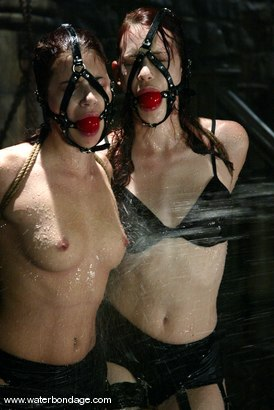 Photo number 2 from Justine Joli and Sarah Blake shot for Water Bondage on Kink.com. Featuring Justine Joli and Sarah Blake in hardcore BDSM & Fetish porn.
