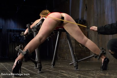Photo number 6 from Conflicted - Claire Robbins shot for Device Bondage on Kink.com. Featuring Claire Robbins, Mz Berlin and Orlando in hardcore BDSM & Fetish porn.