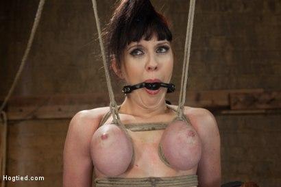 Photo number 11 from Jade Aspen & Nerine Get Introduced to HogTied shot for hogtied on Kink.com. Featuring Jade Aspen in hardcore BDSM & Fetish porn.
