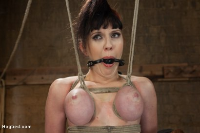 Photo number 11 from Jade Aspen & Nerine Get Introduced to HogTied shot for Hogtied on Kink.com. Featuring Jade Aspen in hardcore BDSM & Fetish porn.