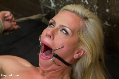 Photo number 3 from Tara Lynn Foxx is INSATIABLE shot for Hogtied on Kink.com. Featuring Tara Lynn Foxx in hardcore BDSM & Fetish porn.