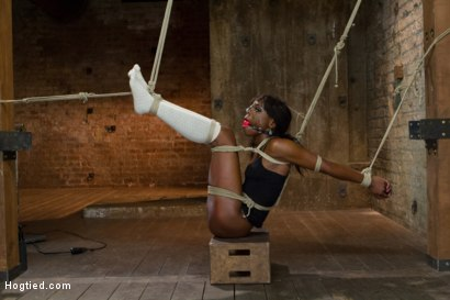 Photo number 1 from Former Runway Model Tamed - Ana Foxxx shot for Hogtied on Kink.com. Featuring Ana Foxxx in hardcore BDSM & Fetish porn.