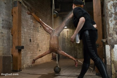 Photo number 12 from Former Runway Model Tamed - Ana Foxxx shot for Hogtied on Kink.com. Featuring Ana Foxxx in hardcore BDSM & Fetish porn.