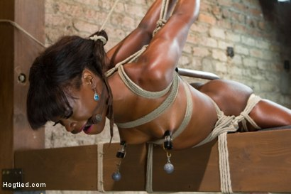 Photo number 8 from Former Runway Model Tamed - Ana Foxxx shot for Hogtied on Kink.com. Featuring Ana Foxxx in hardcore BDSM & Fetish porn.