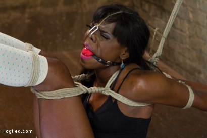 Photo number 4 from Former Runway Model Tamed - Ana Foxxx shot for Hogtied on Kink.com. Featuring Ana Foxxx in hardcore BDSM & Fetish porn.