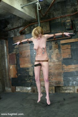 Photo number 6 from Lain Oi shot for Hogtied on Kink.com. Featuring Lain Oi in hardcore BDSM & Fetish porn.