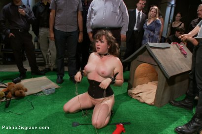 Photo number 9 from Puppy love! Chubby pet turned obedient bitch. shot for Public Disgrace on Kink.com. Featuring Alexxa Bound and Astral Dust in hardcore BDSM & Fetish porn.