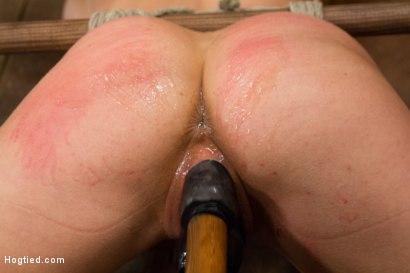 Photo number 5 from Cherie Deville - Hawt Blonde Gets Pounded shot for Hogtied on Kink.com. Featuring Cherie DeVille in hardcore BDSM & Fetish porn.