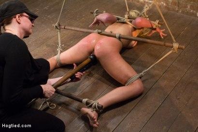 Photo number 6 from Cherie Deville - Hawt Blonde Gets Pounded shot for Hogtied on Kink.com. Featuring Cherie DeVille in hardcore BDSM & Fetish porn.