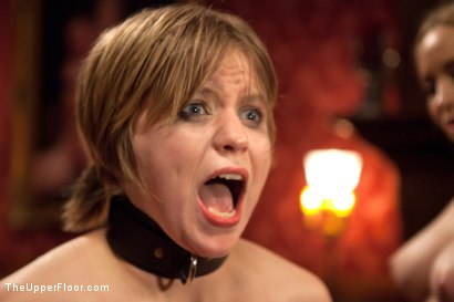 Photo number 5 from Psycho Lesbian Party Night shot for The Upper Floor on Kink.com. Featuring Aiden Starr, Alani Pi and Beretta James in hardcore BDSM & Fetish porn.