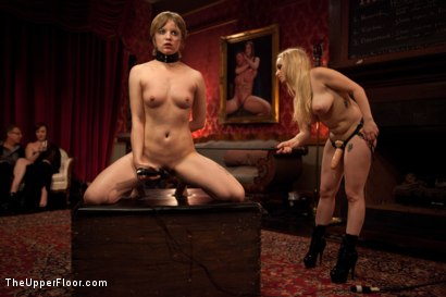 Photo number 3 from Psycho Lesbian Party Night shot for The Upper Floor on Kink.com. Featuring Aiden Starr, Alani Pi and Beretta James in hardcore BDSM & Fetish porn.