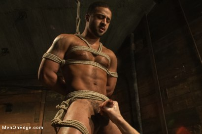 Photo number 7 from Bound Captured Stud Cums in Mid-air shot for Men On Edge on Kink.com. Featuring Damian Taylor in hardcore BDSM & Fetish porn.
