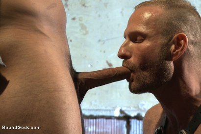 Photo number 5 from Bound Body Builder shot for Bound Gods on Kink.com. Featuring Alan Ladd and Marcus Ruhl in hardcore BDSM & Fetish porn.