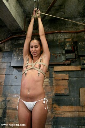 Photo number 3 from Lochai and Isis Love shot for Hogtied on Kink.com. Featuring Lochai and Isis Love in hardcore BDSM & Fetish porn.