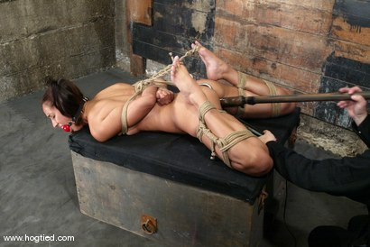 Photo number 12 from Lochai and Isis Love shot for Hogtied on Kink.com. Featuring Lochai and Isis Love in hardcore BDSM & Fetish porn.