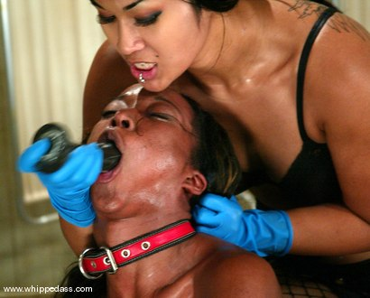 Photo number 14 from DragonLily and Stacey Cash shot for Whipped Ass on Kink.com. Featuring DragonLily and Stacey Cash in hardcore BDSM & Fetish porn.
