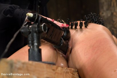 Photo number 10 from Mz Berlin vs Andre Shatki shot for Device Bondage on Kink.com. Featuring Andre Shakti and Mz Berlin in hardcore BDSM & Fetish porn.