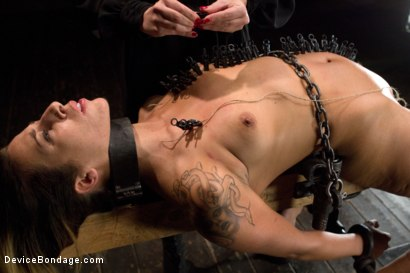Photo number 12 from Mz Berlin vs Andre Shatki shot for Device Bondage on Kink.com. Featuring Andre Shakti and Mz Berlin in hardcore BDSM & Fetish porn.