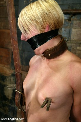 Photo number 5 from Vendetta shot for Hogtied on Kink.com. Featuring Vendetta in hardcore BDSM & Fetish porn.