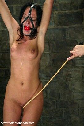 Photo number 9 from Melissa Lauren shot for Water Bondage on Kink.com. Featuring Melissa Lauren in hardcore BDSM & Fetish porn.