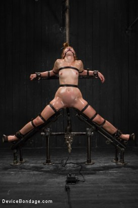 Photo number 11 from Jodi Taylor LIVE shot for Device Bondage on Kink.com. Featuring Jodi Taylor, Mz Berlin and Ivy Addams in hardcore BDSM & Fetish porn.