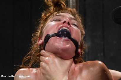 Photo number 12 from Jodi Taylor LIVE shot for Device Bondage on Kink.com. Featuring Jodi Taylor, Mz Berlin and Ivy Addams in hardcore BDSM & Fetish porn.