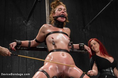 Photo number 13 from Jodi Taylor LIVE shot for Device Bondage on Kink.com. Featuring Jodi Taylor, Mz Berlin and Ivy Addams in hardcore BDSM & Fetish porn.